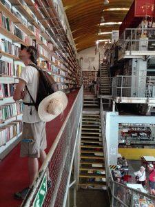 translator books